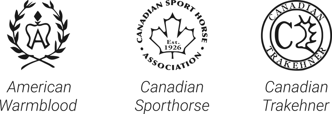 Sporthorse certifications
